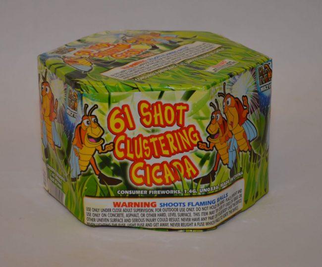 200 Grams Repeaters – 61 Shot Clustering Cicada 1