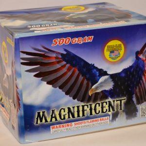 500 Gram Finale Cake – Magnificent 2