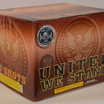 500 Gram Finale Cake – United We Stand 2