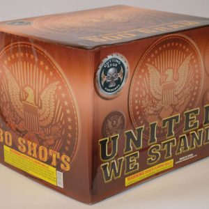 500 Gram Finale Cake – United We Stand 3