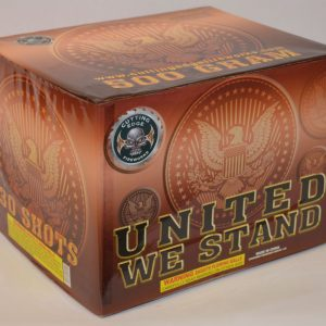 500 Gram Finale Cake – United We Stand 4